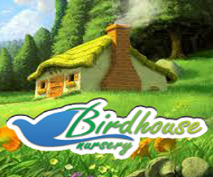 Bird House Language Nursery
